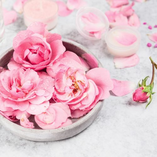 rosas-spa