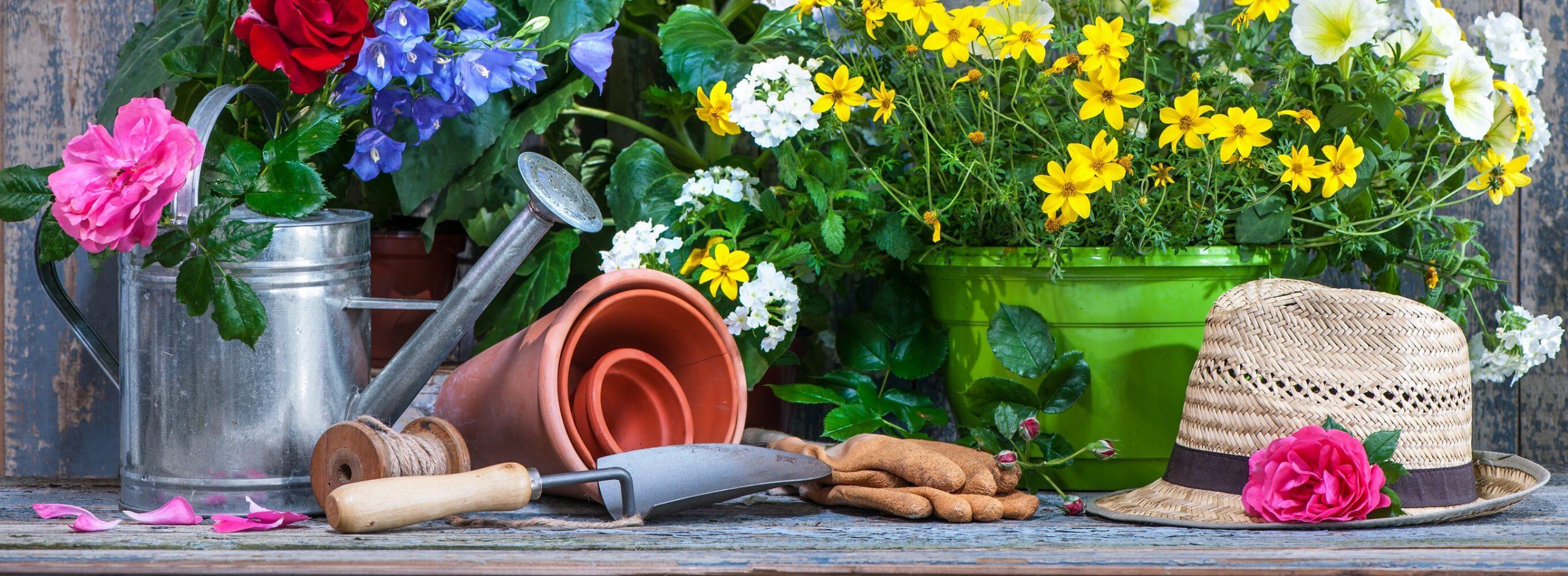 Que ferramentas de jardinagem precisa para cuidar do seu jardim?