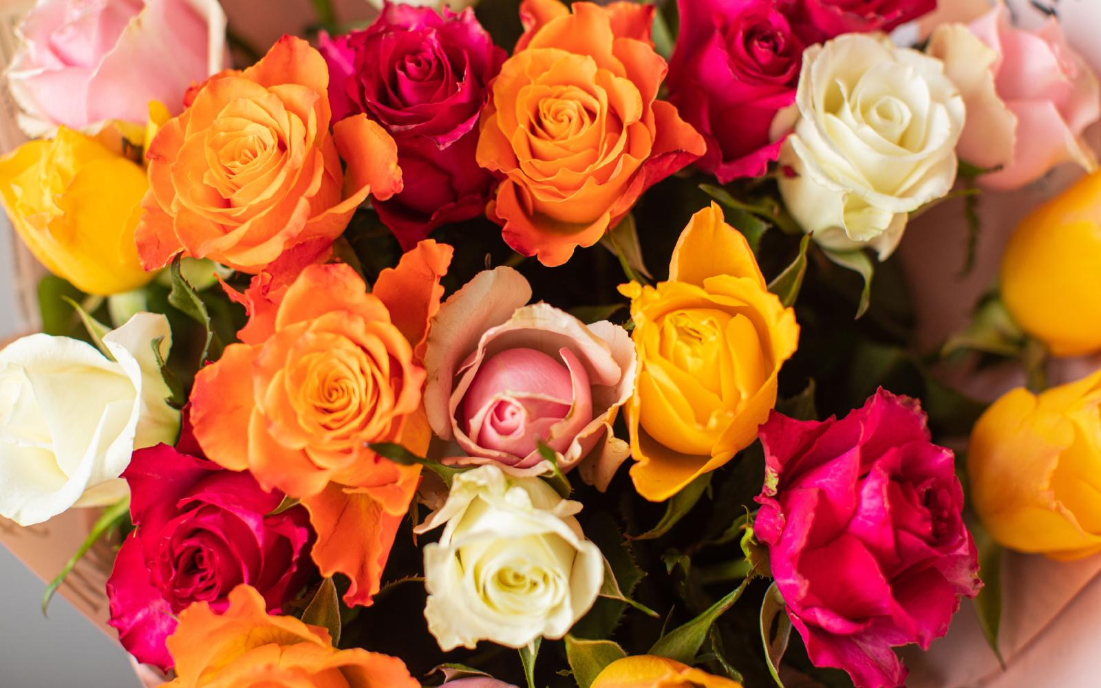 O significado da cor das flores